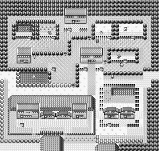 fuchsia-city-pokemon