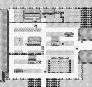 pewter-city-pokemon