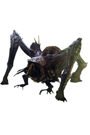 lords-of-the-fallen-spider