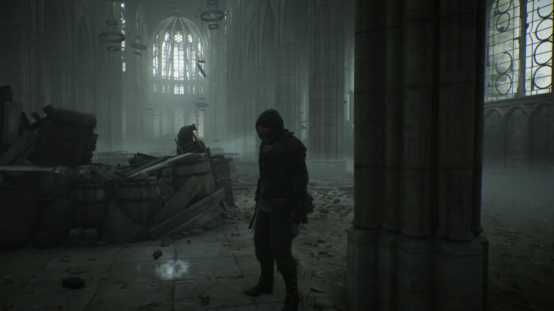 Assassin's Creed® Unity_20150123034238