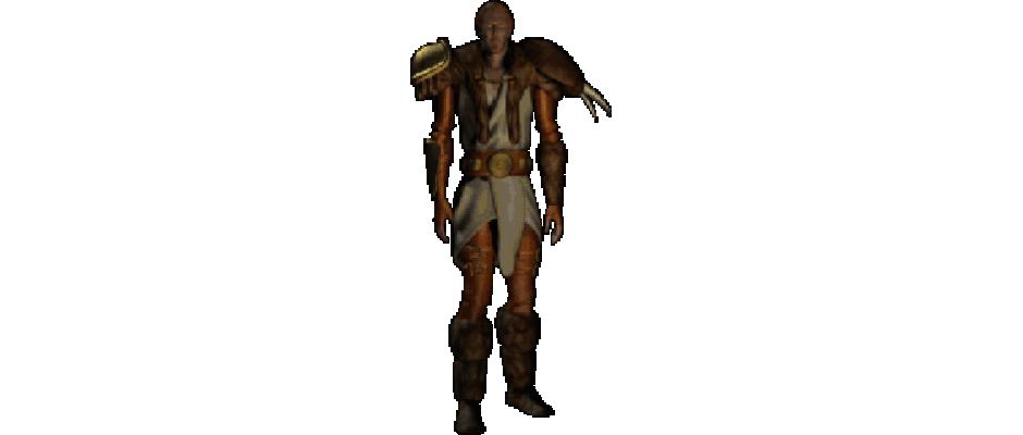 druid-diablo-ii
