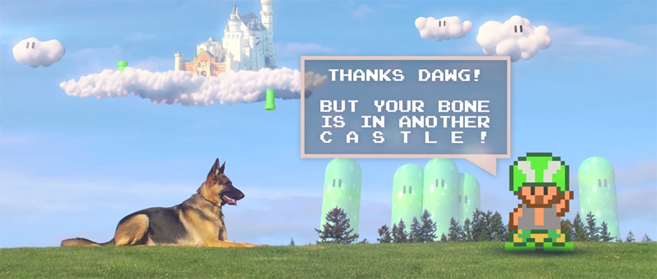 Conoce al perro que juega Mario y Minecraft... en la vida real