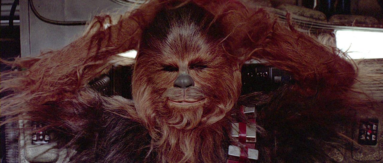 Chewbacca_arrested