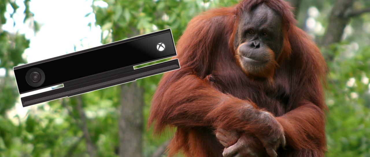 OrangutanKinect