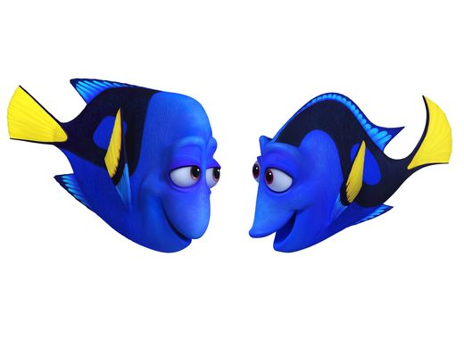 635948551142934892-finding-dory-fdcs-CharlieJenny10-101.per16.101