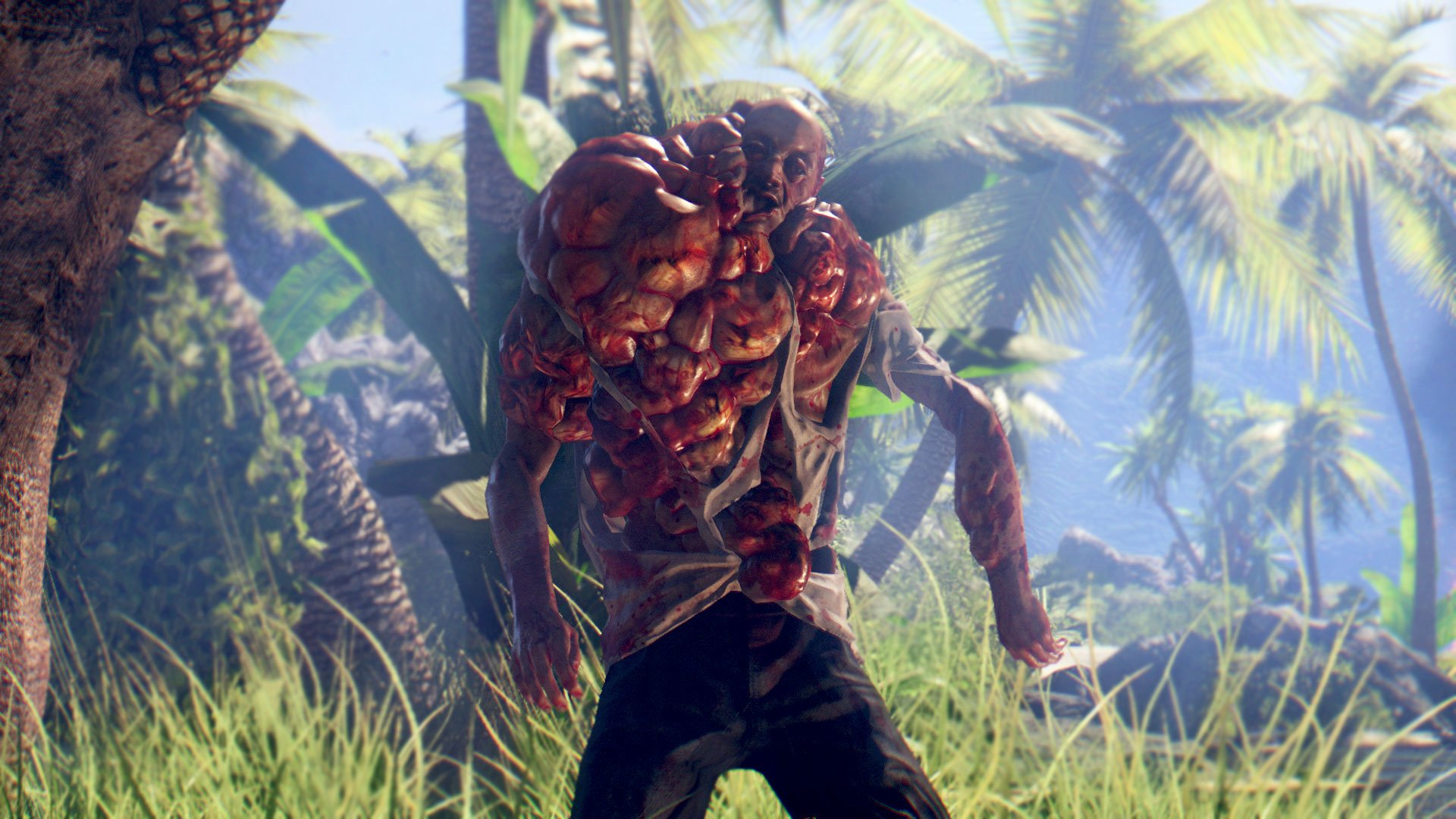 dead_island_definitive_collection-3321793