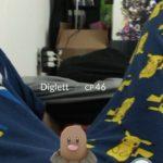 DiglettPokemonGo05