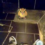 PokemonGoStrangePlaces14