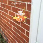 PokemonGoStrangePlaces32