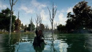 PUBG Swamp