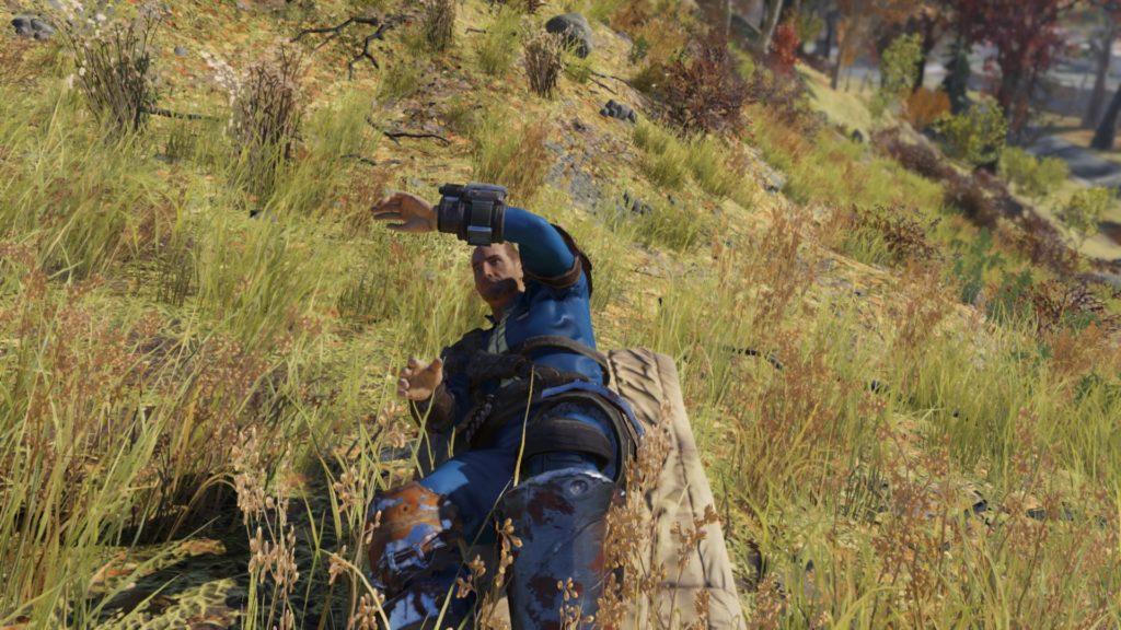 Fallout 76_20181116174137