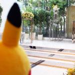 Boda Pikachu Atomix 1
