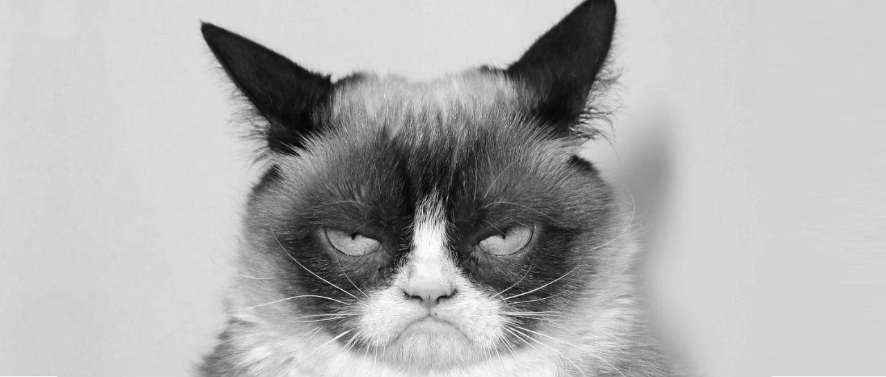 Grumpy Cat Atomix bw
