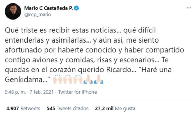 Ricardo-Silva-Mensaje-Mario