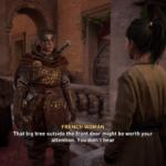 Assassin's Creed Valhalla (20)