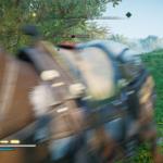 Assassin's Creed Valhalla (36)
