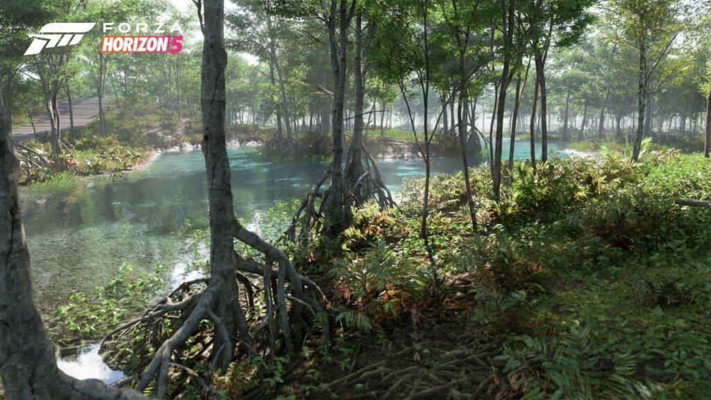 FH5_Biome-Swamp-02-16x9_WM